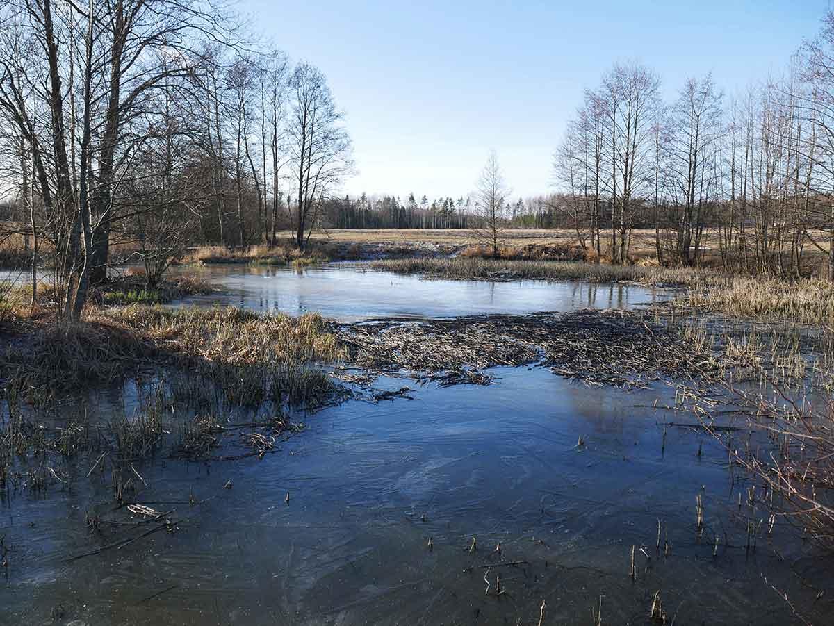 Laskeutusaltaat-ovat-pidättäneet-hyvin-valumaveden-mukana-tulevaa-kiintoainesta